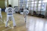 Brentford Tae Kwon Do_2013_05_29_0026